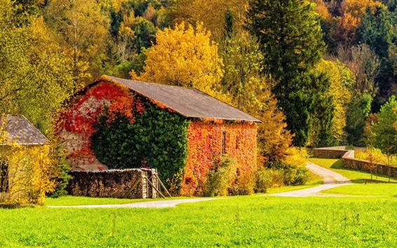 Wallpaper Beautiful autumn, house, red yellow green leaves
