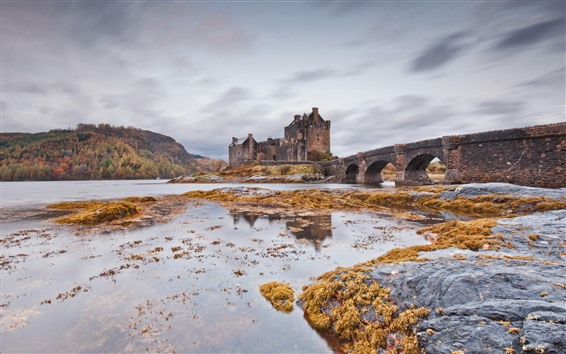 Wallpaper Bridge, castle, river, Scotland