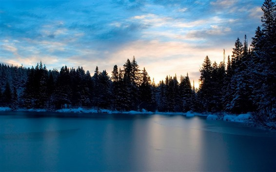 Wallpaper Lake, trees, snow, winter, sunset, dusk