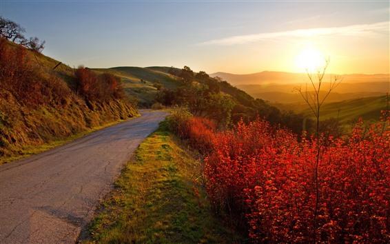 Papéis de Parede Montanhas, estrada, folhas vermelhas, plantas, nevoeiro, nascer do sol, manhã