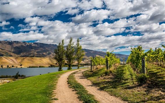 Fondos de pantalla Nueva Zelanda, camino, árboles, río, montañas, nubes blancas