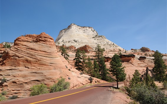Wallpaper Park, rock mountains, trees, road, USA
