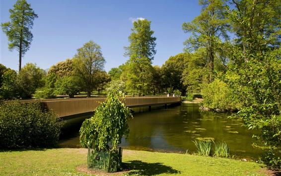 Fond d'écran Parc, arbres, rivière, pont, pré, vert
