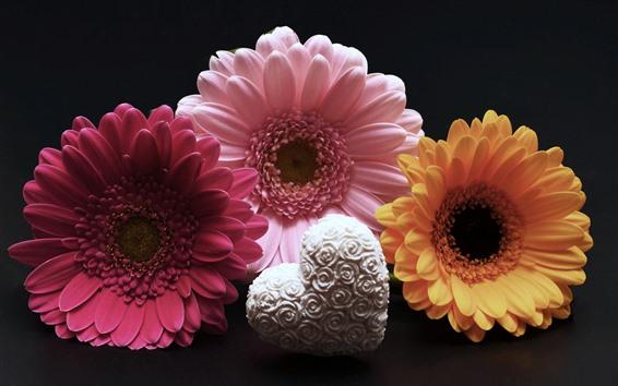 Fondos de pantalla Tres flores de gerbera, corazón de amor