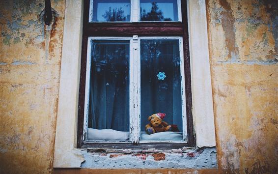 壁紙 窓、壁、テディベア