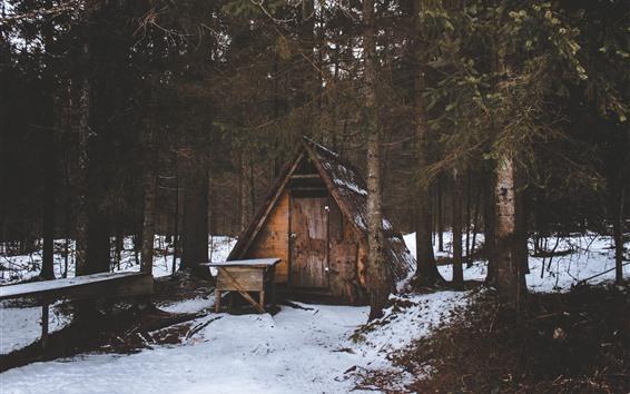 Fond d'écran Hiver, cabane, arbres, neige