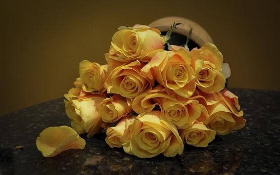 배경 화면 노란 장미, 꽃잎, 꽃다발, 꽃 클로즈업