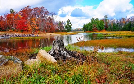 배경 화면 아름다운 자연 풍경, 나무, 강, 잔디, 가을