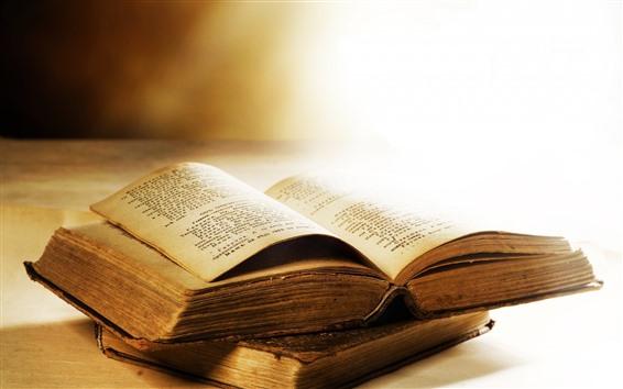 Papéis de Parede Livro, brilho