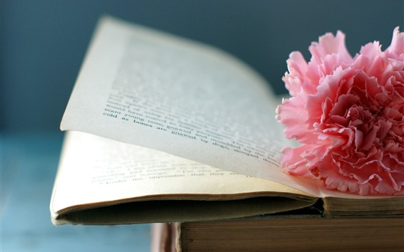 Wallpaper Book, pink peony flower