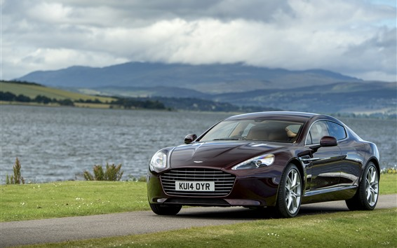 Wallpaper Brown color Aston Martin car, river, grass