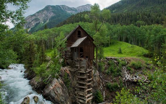 Fond d'écran Crystal Mill, arbres, rivière, montagne, vert, USA