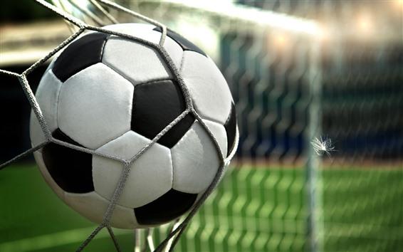 Wallpaper Football, net, feather