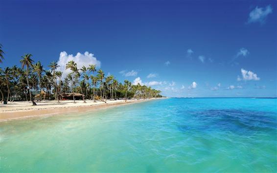 Wallpaper Maldives, tropical, beach, palm trees, blue sea