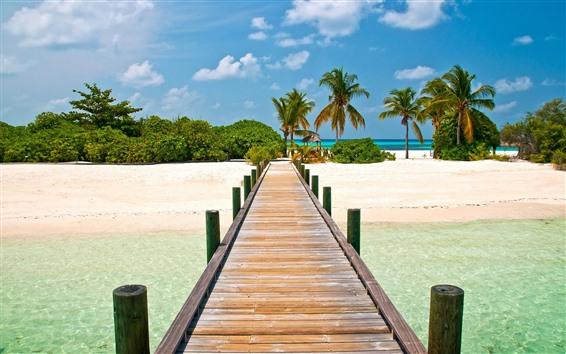 Wallpaper Maldives, tropical, bridge, beach, palm trees, sea