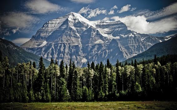 Papéis de Parede Montanhas, árvores, neve, nuvens, paisagem natural
