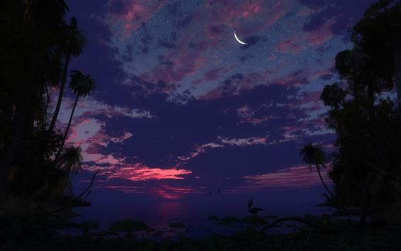 Fond d'écran Mer, nuit, palmiers, étoilé, lune