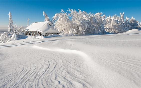 Fondos de pantalla Nieve espesa, árboles, casa, mundo blanco, invierno