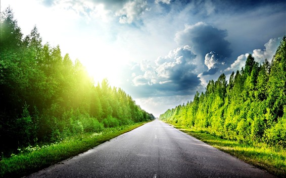 Fondos de pantalla Árboles, verde, camino, sol, nubes, resplandor