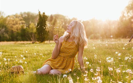 Обои Блондинка играет одуванчик, луг, лето, солнце