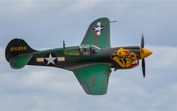 Wallpaper Classic plane, fly, sky