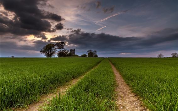 Papéis de Parede Campos, estrada, árvores, nuvens, crepúsculo
