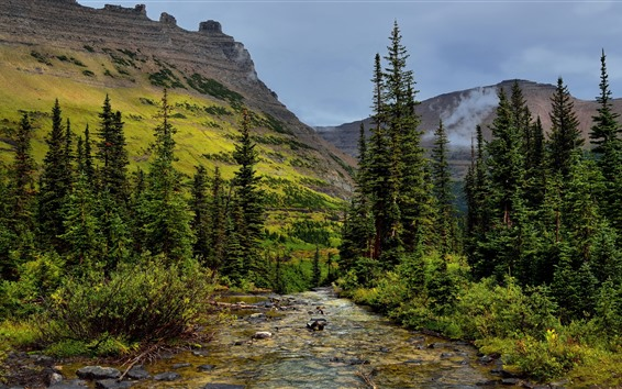 Wallpaper Glacier National Park, trees, mountains, stream, USA