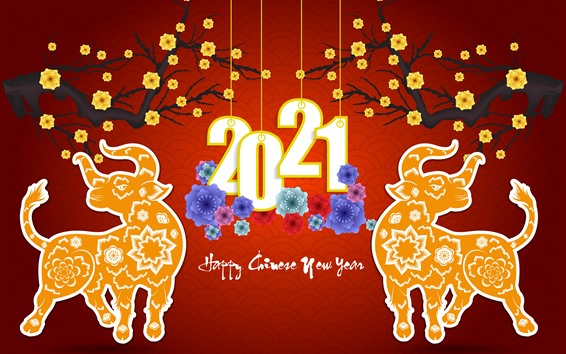 Wallpaper Happy New Year 2021, ox, flowers, red background