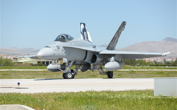 Wallpaper McDonnell Douglas F-18C fighter