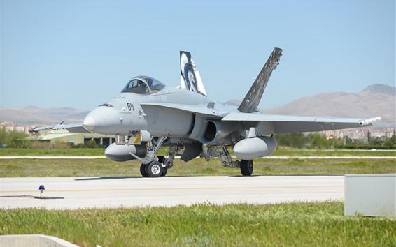 壁紙 マクドネルダグラスF-18C戦闘機