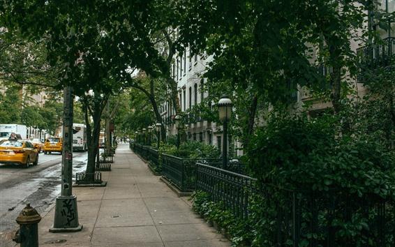 Wallpaper New York, street, trees, houses, cars, USA