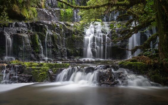 Wallpaper New Zealand, Purakaunui Falls, waterfalls