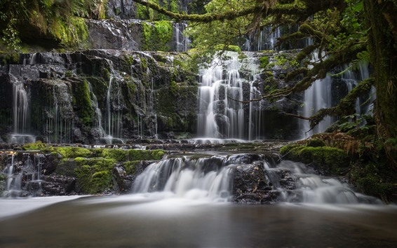 Обои Новая Зеландия, водопад Пуракаунуи, водопады