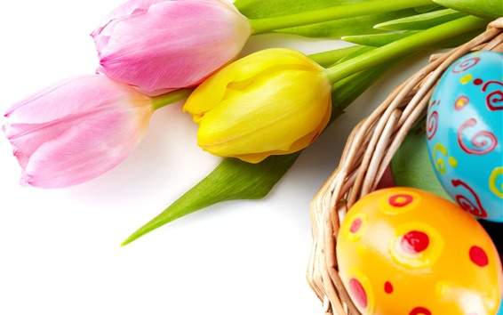 Wallpaper Pink and yellow tulip flowers, colorful Easter eggs