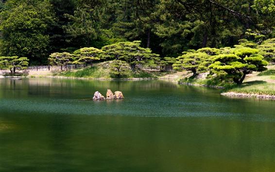 Papéis de Parede Parque Ritsurin, Takamatsu, lagoa, árvores, verde, Japão