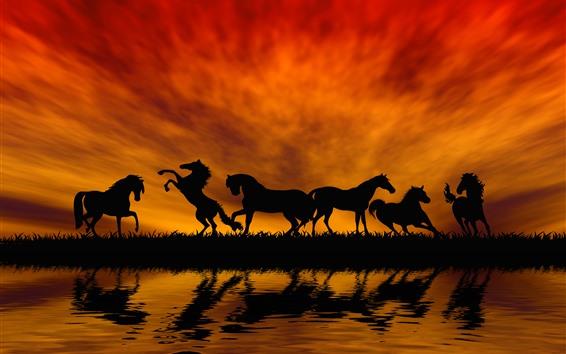 Обои Некоторые лошади, силуэт, трава, река, вода, закат, красное небо