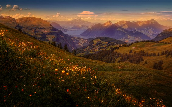 Wallpaper Switzerland, mountains, meadow, houses, trees, dusk