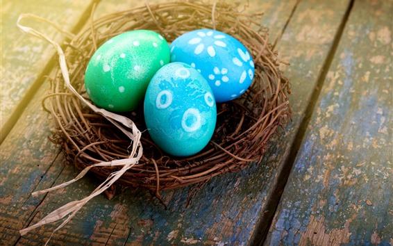 배경 화면 3 개의 파란색 부활절 달걀, 둥지