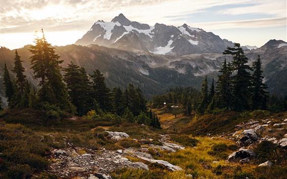 Papéis de Parede Árvores, montanha, raios de sol, nuvens, grama, paisagens naturais