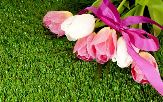 배경 화면 튤립, 꽃다발, 잔디, 초원