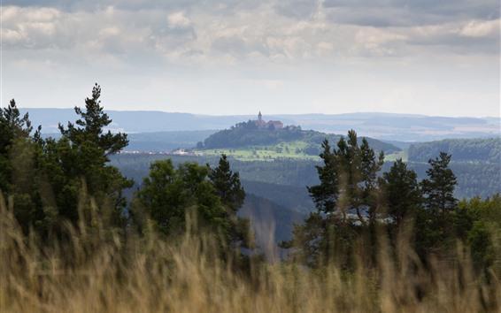 Wallpaper Castle, hills, trees, grass, fog