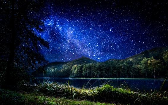 Wallpaper Croatia, Trakoscan, stars, grass, trees, river, night