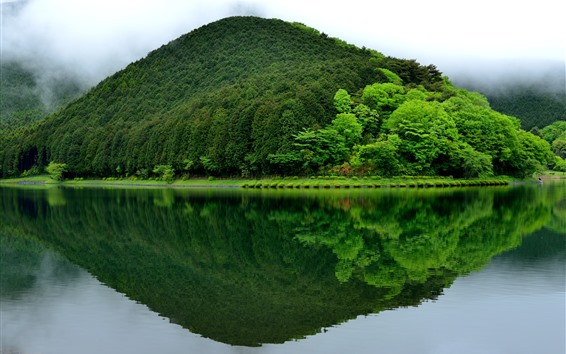 Papéis de Parede Fujinomiya, Lago Tanuki, montanha, verde, reflexo de água, Japão