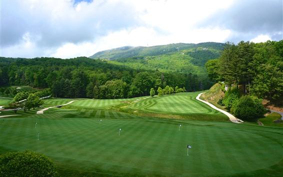 Papéis de Parede Golf Gramado, Árvores, Verde, Bandeiras, Carolina, EUA
