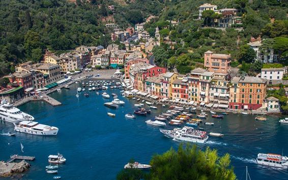 Wallpaper Italy, Portofino, bay, sea, boats, yachts, houses
