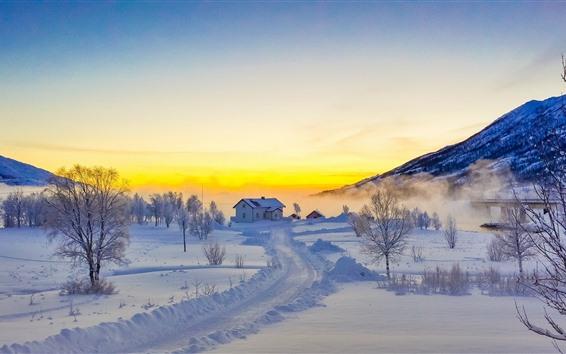 배경 화면 Lofoten 섬, 눈, 산, 나무, 안개, 겨울, 집, 노르웨이