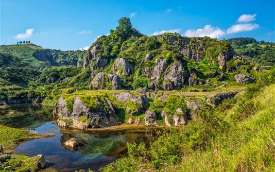 배경 화면 산, 호수, 돌, 녹색, 잔디, 푸른 하늘