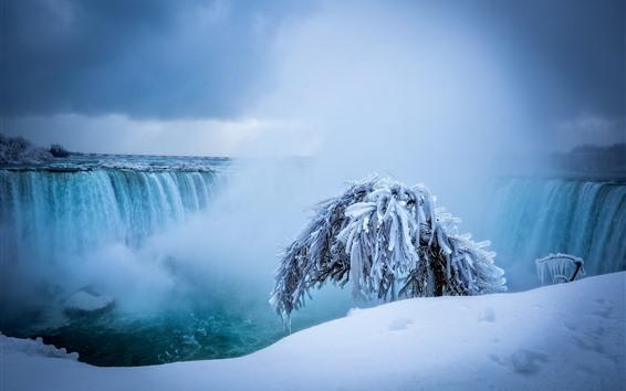 Papéis de Parede Cataratas do Niágara, cachoeiras, neve, árvore, inverno