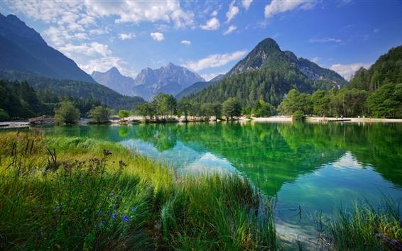 배경 화면 슬로베니아, 호수, 줄리안 알프스, 나무, 산