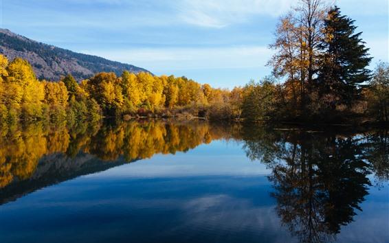 배경 화면 워싱턴, 호수, 나무, 물 반사, 가을